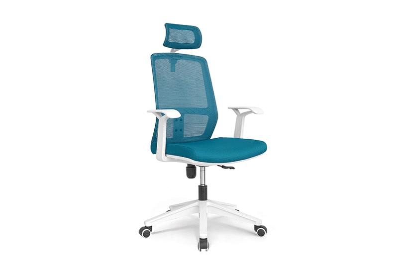 Ghế chống đau lưng Xuân Hòa GTP-21-00