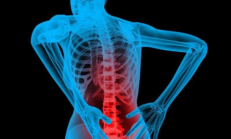 Tại sao tập gym bị đau lưng